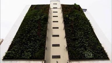 Jardins verticais mudam paisagem cinzenta do centro de São Paulo - Grupo transforma paredões em espaços verdes. Construtoras que cortam árvores para erguer prédios pagam pela instalação dos jardins verticais.