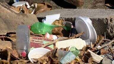 Lixo nas ruas ameaça a saúde de moradores de Vitória, ES - Eles temem doenças transmitidas por mosquitos.