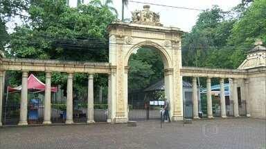 Zoológico do Rio é reaberto ao público - Depois de quase dois meses interditado, o zoológico foi reaberto nesta terça-feira (8), mas algumas áreas ainda estão fechadas.