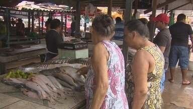 Pescap divulga lista de espécies com preços baixos para Semana Santa - A Agência de Pesca do Amapá, Pescap, já montou o cronograma para a venda de peixe em diferentes pontos de Macapá durante a semana Santana. Mais de 27 espécies serão comercializadas com preços que ficarão entre seis e quinze reais.