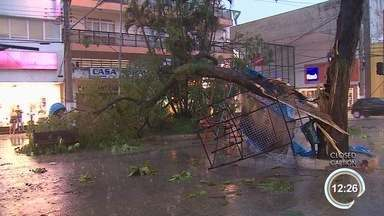 Chuva na tarde desta quarta deixou ruas alagadas em quase todas cidades da região - Em Taubaté caíram 12 árvores.