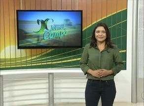 Veja o que é notícia no Jornal do Campo deste domingo (10) - Veja o que é notícia no Jornal do Campo deste domingo (10)