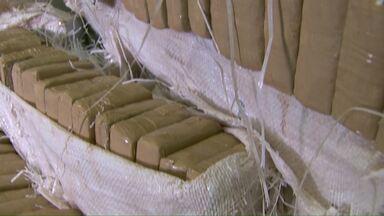 Mais de duzentos quilos de maconha são apreendidos em Foz - A apreensão foi após uma denúncia recebida pela delegacia de Narcóticos