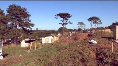 Polícia Militar faz reintegração de posse em terreno no São Braz - O terreno foi invadido no mês passado