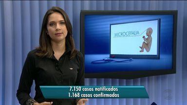 Sobe número de casos confirmados de microcefalia no Brasil - Já são mais de 7 mil casos notificados com 1.168 casos confirmados.