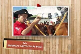Divina Lembrança: Internautas mostram registros da Festa do Divino - Faltam oito dias para início do evento.