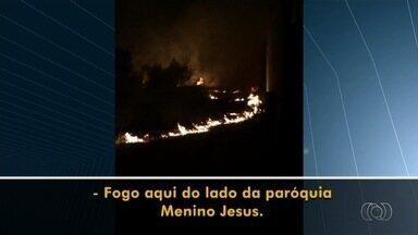 Telespectador registra queimada às margens da GO-020, em Goiânia - O vídeo foi enviado pelo aplicativo Quero Ver na TV (QVT) próximo ao Centro Cultural Oscar Niemeyer, na capital.