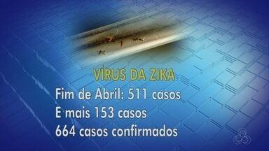 Mais de 150 casos de Zika foram confirmados desde abril, em Manaus - Cuidados com o mosquito Aedes aegypti