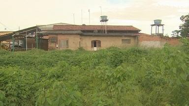 Terrenos abandonados causam transtornos para moradores de Santana - Terrenos abandonados causam transtornos para moradores de Santana