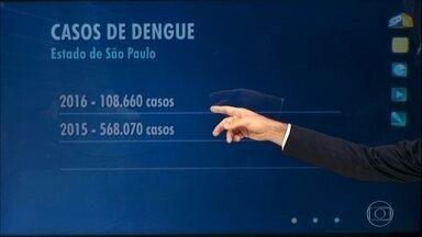 Casos de dengue diminuem 81% entre janeiro e abril deste ano - O dado é em comparação ao mesmo período do ano passado. Nos quatro primeiros meses do ano, foram mais de 108 mil casos no estado. No ano passado foram 568 mil.