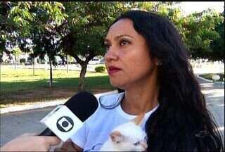 Cariri tem evento de adoção de animais - Cariri tem evento de adoção de animais