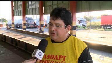 Greve na Adapi prejudica vacinação da aftosa no Piauí - Greve na Adapi prejudica vacinação da aftosa no Piauí