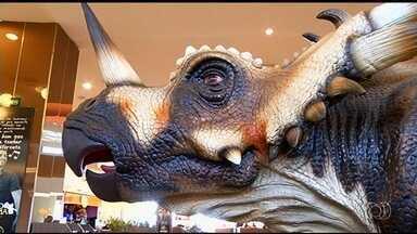 Exposição de dinossauros chama atenção de moradores de Rio Verde - Representação dos animais pré-históricos é considerada bem próxima do real.