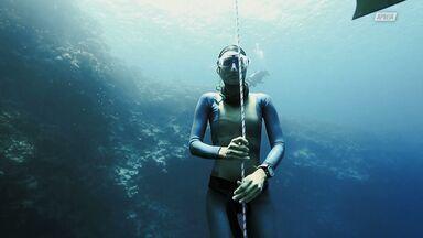 Egito: O Paraíso Do Mergulho Livre