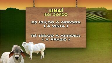 Confira a cotação do mercado do boi - Em Curvelo, o boi gordo custa R$ 137 à vista e R$ 139 a prazo.