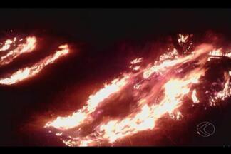 Incêndio atinge área às margens da BR-365 próximo a Patrocínio - Corpo de Bombeiros levou 5h para conter as chamas; rodovia foi interditada. Incêndio pode ter sido criminoso e quase atingiu lavouras da região.
