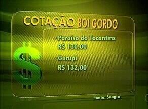 Confira os valores da arroba do boi gordo e a cotação do leite no Tocantins - Confira os valores da arroba do boi gordo e a cotação do leite no Tocantins