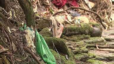 Estudantes, soldados e voluntários fazem mutirão de limpeza no Pilão de Pedra - O córrego tem índice de poluição igual ao Rio Tietê, segundo pesquisa da UTFPR