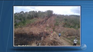 Fazendas na região de Santaninha, em Ilhéus, são incendiadas - Os produtores rurais da região acusam seis índios da tribo Tupinambá.