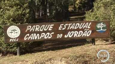 Estado quer repassar 25 parques à iniciativa privada - Horto Florestal em Campos do Jordão deve ser o primeiro a entrar no pacote de concessões.