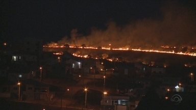 Chapecó registra 12 incêndios em vegetação em menos de 24h - Chapecó registra 12 incêndios em vegetação em menos de 24h