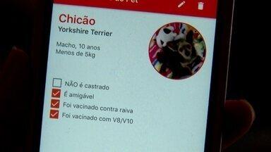 Aplicativo ajuda donos de cães e gatos na hora das viagens - Em um aplicativo de celular, cuidadores se candidatam a tomar conta dos animais. Os clientes são donos de cachorros e gatos que também cadastram seus bichinhos. O dono é quem escolhe o cuidador, chamado de anfitrião.