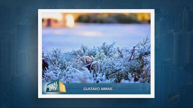 Telespectadores enviam fotos de paisagens com o frio que atinge o Sul de Minas - Telespectadores enviam fotos de paisagens com o frio que atinge o Sul de Minas