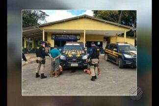Polícia Federal apreende 27 quilos de cocaína em Santarém - A droga estava em duas malas no bagageiro de um ônibus que ia para Belém