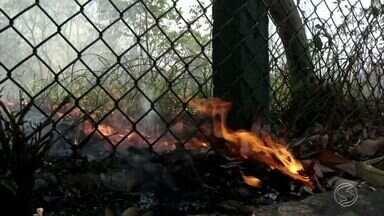 Tempo seco aumenta número de queimadas no Sul do Rio - Situação já é considerada crime ambiental e corresponde por 70% dos atendimentos dos bombeiros nesta época.