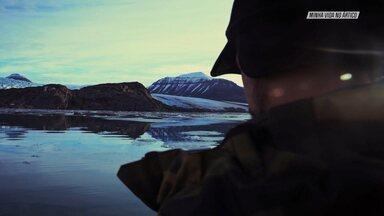 A Vida Selvagem Do Ártico