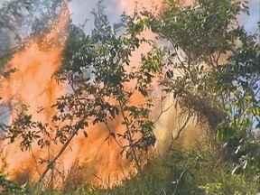Incêndio destrói cerca de 30 mil m² de vegetação em Pres. Prudente - Fogo atingiu área próxima ao Residencial São Paulo.