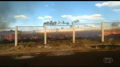 Bombeiros atendem a cerca de 20 ligações por dia para apagar fogo em lotes, em Itumbiara - Corporação afirma que não tem condições de atender a todas as ocorrências.