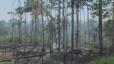 Três incêndios atingiram áreas próximas à vila do Dnit - Chamas quase atingiram a igreja da região.
