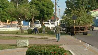 Moradores reclamam da poda de árvores em frente à igreja de São Sebastião - Trabalho foi feito por uma equipe da prefeitura de Santarém. Segundo a Secretaria Municipal de Meio Ambiente (Semma), há um planejamento de manutenção das arvores no município.