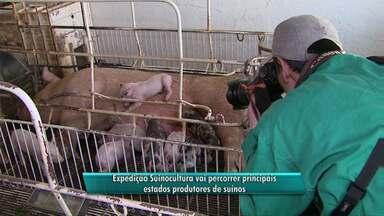 Expedição Suinocultura vai percorrer principais estados produtores de suínos - Objetivo é traçar um diagnóstico do setor.