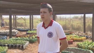 Estudante de Rondônia cria sistema inteligente para irrigar horta de escola - Projeto foi apresentado em fórum na PUC do Rio Grande do Sul.Sistema detecta umidade do solo e evita desperdício de água.