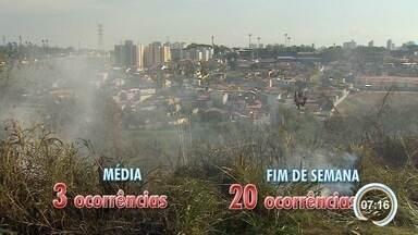 Baixa umidade faz aumentar número de queimadas em São José - A média, que costuma ser de três ocorrências perigosas, chegou a vinte no final de semana.