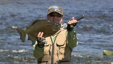 Pesca no rio São Benedito - No Pará, corredeiras desafiam os pescadores do Terra da Gente.