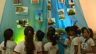 No Dia Nacional da Árvore, estudantes fazem exposição fotográfica sobre a natureza - Ensaio chama atenção para a preservação da natureza.