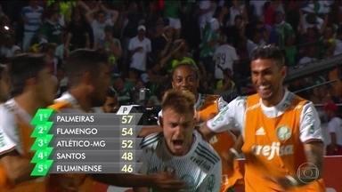 Palmeiras fica a três pontos de vantagem do Flamengo após vencer o Santa Cruz por 3 a 2 - Zé Roberto fez um golaço, encobrindo o goleiro.