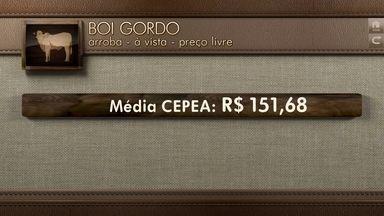 Globo Rural: cotações - Confira a cotação do boi gordo e do café na semana.
