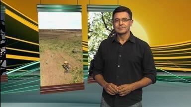 Veja os principais assuntos do Jornal do Campo deste domingo (8) - Entre os destaques está uma reportagem especial com órgãos que fiscalizam os danos causados ao Rio Araguaia.