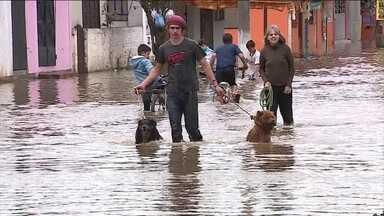 Cidades do Rio Grande do Sul sofrem com enchentes - A chuva deu uma trégua no estado. Mais de seis mil casas foram atingidas. Na região de Porto Alegre, o Rio Guaíba não para de subir e ainda causa transtornos.