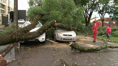 Temporais atingem Cianorte e Londrina - A velocidade dos ventos chegou aos 100 km/h.