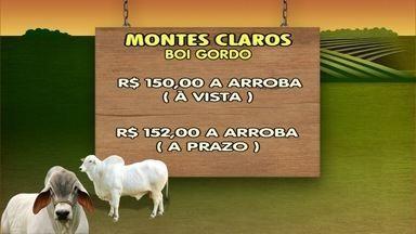 Veja como está a cotação do boi na região - Em Montes Claros, R$150 a arroba a vista.
