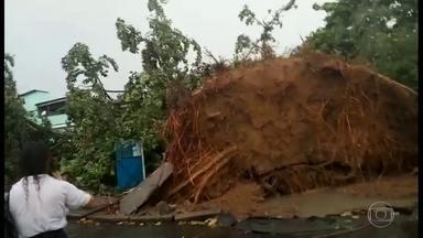 Temporal derruba árvore gigante cai em Anchieta - Uma árvore caiu na frente da escola municipal Mestre Valentim, em Anchieta, no horário da saída dos alunos. Ninguém se feriu. Em Mesquita, ruas ficaram alagadas.