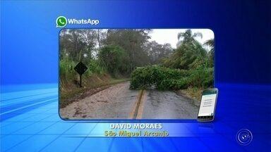 Chuva causa estragos em Taquarituba, São Miguel Arcanjo e Tatuí - Moradores de Taquarituba (SP), São Miguel Arcanjo (SP) e Tatuí (SP) registraram estragos causados pela chuva de quarta-feira (9). Confira!