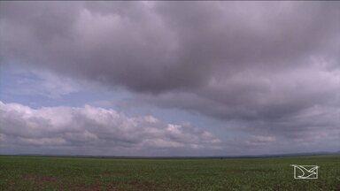 Chuva chega ao sul do MA e traz alívio aos produtores da região - Os agricultores devem acelerar o plantio da safra de soja nos próximos dias e tentar se recuperar dos prejuízos da safra passada.