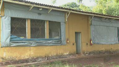 Polícia apura furto de frangos usados em projeto da USP Pirassununga, SP - Foi registrado boletim de ocorrência e a polícia civil investiga o caso.