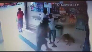 Homem agride cachorro dentro de lotérica em Lambari (MG) - Homem agride cachorro dentro de lotérica em Lambari (MG)